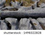 Smooth Exposed Grey Limestone...