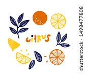 collection of citrus fruits  ... | Shutterstock .eps vector #1498477808