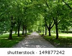 a pathway in a park | Shutterstock . vector #149877242