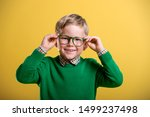 Portrait Of Blond Little Boy In ...