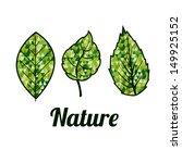 nature design over white... | Shutterstock .eps vector #149925152