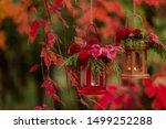 Fall Time. Autumn Decoration....