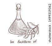 vector drawing sea buckthorn... | Shutterstock .eps vector #1499319362