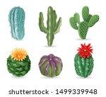 Realistic Cactuses. Decorative...