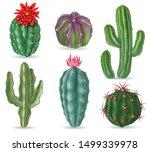 Realistic Cactus. Decorative...