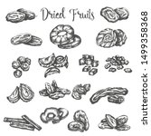 dried fruits hand drawn... | Shutterstock .eps vector #1499358368