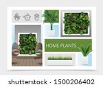 realistic home plants...   Shutterstock .eps vector #1500206402