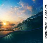 Nature Marine Design Postcard....