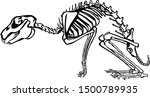 Stock vector illustration of a rabbit skeletal system on a white background 1500789935
