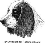 spaniel portrait | Shutterstock .eps vector #150168122