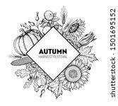 pumpkin  sunflower  corn and... | Shutterstock .eps vector #1501695152