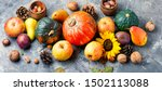 Autumn Composing With Pumpkin ...