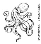 octopus sketch. hand drawn... | Shutterstock .eps vector #1502343308