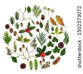 winter flora and fauna... | Shutterstock . vector #1502573072