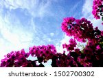 Nature Background With...