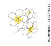 plumeria flowers bunch in... | Shutterstock .eps vector #1502776352