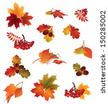 autumn icon set. fall leaves... | Shutterstock .eps vector #150285002