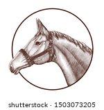 logo of horse head in circle... | Shutterstock .eps vector #1503073205