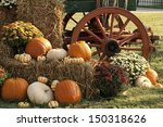 Colorful Autumn Pumpkin Display
