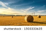 Hay Bales On The Golden...