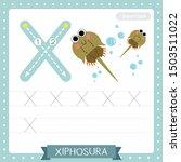 letter x uppercase cute... | Shutterstock .eps vector #1503511022