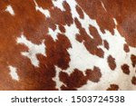 Abstract Background Of The Cow...