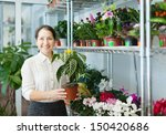 mature woman with  aphelandra... | Shutterstock . vector #150420686