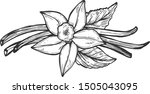 vector illustration of floral... | Shutterstock .eps vector #1505043095