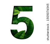 Small photo of Leafs number 5 made of Real alive leafs with Precious paper cut shape of number. Leafs font.
