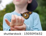 Monarch Butterfly On Child's...