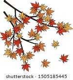 Autumn Leaves Or Japanese Maple ...