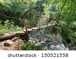 Old Wooden Bridge In A Forest
