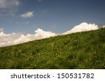 A Grassy Slope Are Silhouetted...