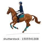 Horse Riding. Female Rider On A ...