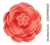 red rose camellia icon. cartoon ... | Shutterstock .eps vector #1505948465