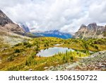 Golden larch trees surround Hungabee Lake and Moor Lakes on the Opabin Trail at Lake O