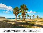 Palm Trees On The Beach Of...