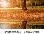 lake and a maple tree | Shutterstock . vector #150693986