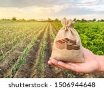 Small photo of The farmer holds a money bag on the background of plantations. Lending and subsidizing farmers. Grants and support. Profit from agribusiness. Land value and rent. Taxes taxation. Agricultural startups