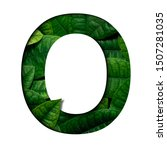 leafs font o made of real alive ...   Shutterstock . vector #1507281035