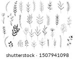 collection forest fern... | Shutterstock .eps vector #1507941098