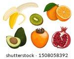 fruit. pomegranate  orange ... | Shutterstock . vector #1508058392