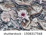 Water Lilies In A Pond....
