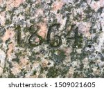 The year 1864 carved in granite and painted in black – a detail of an inscription produced that year. Covered with green lichen