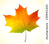 Isolated Autumn Bright Vector...