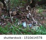 Waste Hung On Vegetation In...