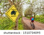 Stock photo galapagos giant tortoise funny sign and woman tourist cycling on bike on santa cruz island on 1510734095