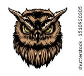 colorful concentrated wise owl... | Shutterstock .eps vector #1510920305