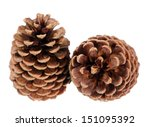 Two Pine Cone Isolated On White