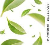 flying whirl green tea leaves... | Shutterstock . vector #1511167298